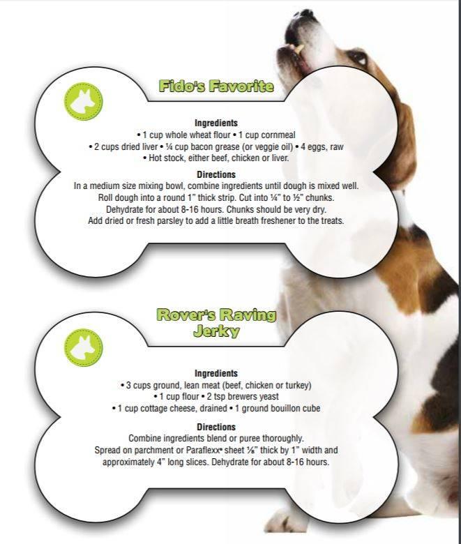 dog recipe