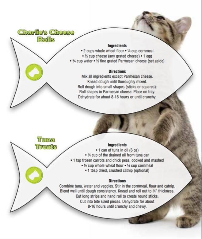 cat treat recipes excalibur ECT dehydrator