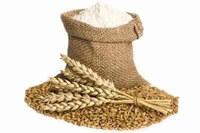 Salzburger Carina Grain Mill flour