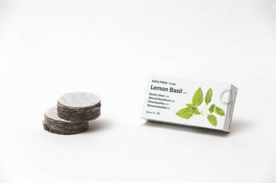 Tregren Herbie and Genie seed pods lemon basil