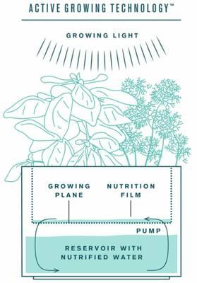 Tregren Herbie hydroponic indoor garden diagram