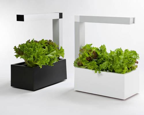 Sana store tregren herbie indoor garden tregren herbie hydroponic indoor garden white view video workwithnaturefo