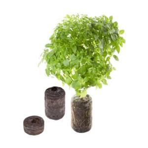 Tregren Herbie hydroponic indoor garden seed pods