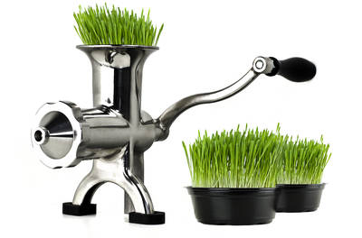 BL-30 wheatgrass juicer